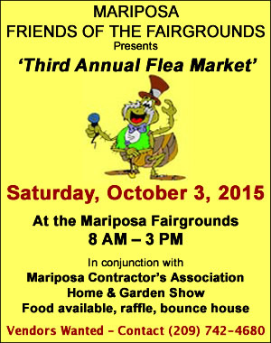 Friends of the Fair Flea Market 2015