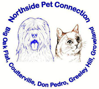 Northside Pet Connection