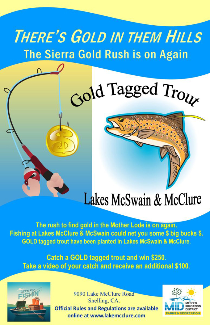 Get out your fishing pole gold tagged trout in lake for Day fishing license ca