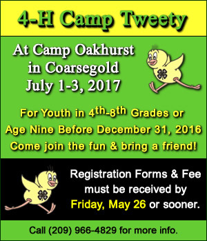 Camp Tweety 2017 2