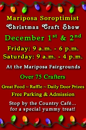 2017 Soroptimist Christmas Craft Show