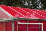 Solar Greenhouses Generate Electricity and Grow Crops At The Same Time, UC Santa Cruz Study Reveals