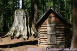 Photo of the Day - May 2, 2016 - A Small Cabin and a Big Sequoia Tree Stump in Madera County