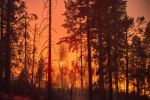 Ferguson Fire Near Yosemite National Park in Mariposa County Monday Morning, August 13, 2018 Update: 96,457 Acres with Containment at 86%