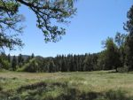 Sierra Foothill Conservancy Hosts a Family Hike in Clark's Valley on May 9, 2015