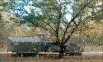 California Almond Growers Review Eventful Season