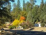 Take a Tour of the Midpines Area With the Midpines Planning Advisory Committee on Saturday, March 7, 2015