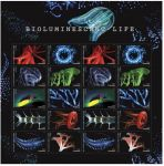 USPS Releases Dazzling Bioluminescent Life Forever Stamps - Incorporates a Special Shimmering Effect