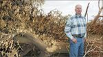 Biomass Plant Closures Affect California Central Valley Farmers