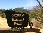 Wildland Fire near Bass Lake in Eastern Madera County on Tuesday Afternoon Burns 10 Acres
