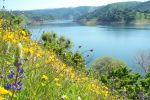 New Melones Lake Activities for Summer 2015 Support the Department of the Interior's Let's Move Outside Initiative