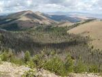 USGS Finds Increasingly Severe Disturbances Weaken World's Temperate Forests
