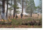 Yosemite National Park 2016 Proposed Prescribed Fires and Other Fuels Thinning Projects