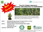 U.S. Forest Service Groveland Office Has Free Tree Seedlings For Homeowners