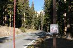 Yosemite National Park Bear Facts September 4th – September 17th, 2016
