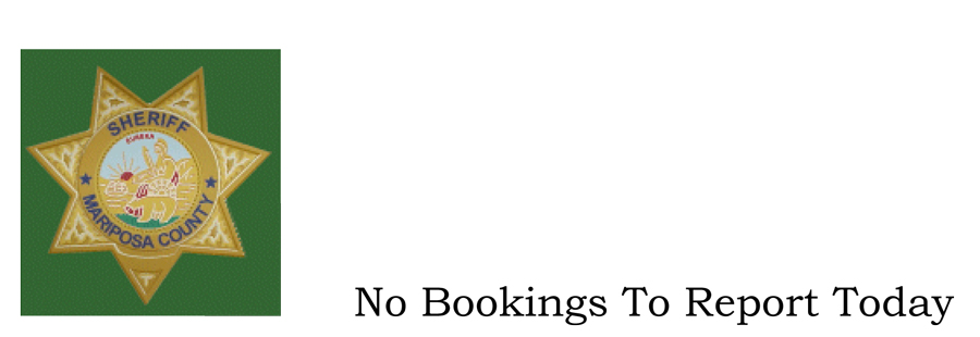 No Bookings To Report