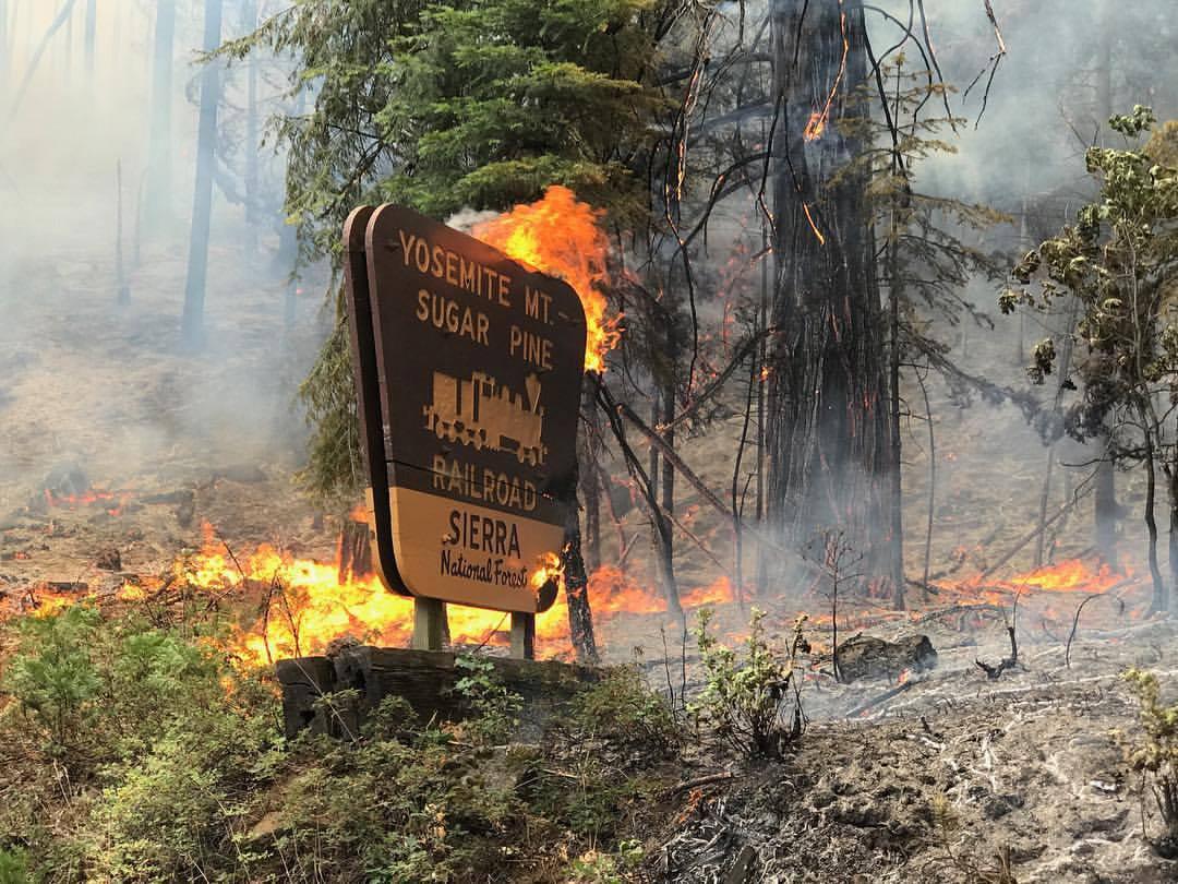 sugar pine fire madera county