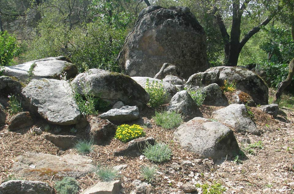 Master Gardeners Rock garden, May 08 cr