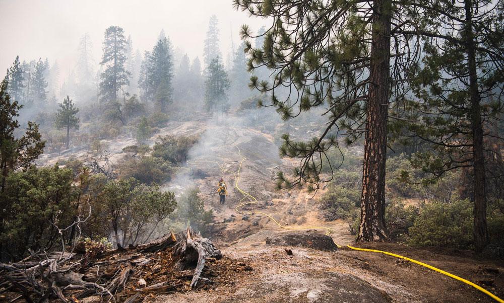 8 8 18 Plumbed Fire Line USFS