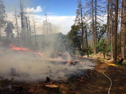 sierra national forest burn credit usda sierranf