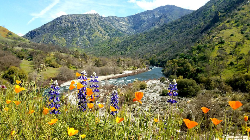 sierra national forest credit usda